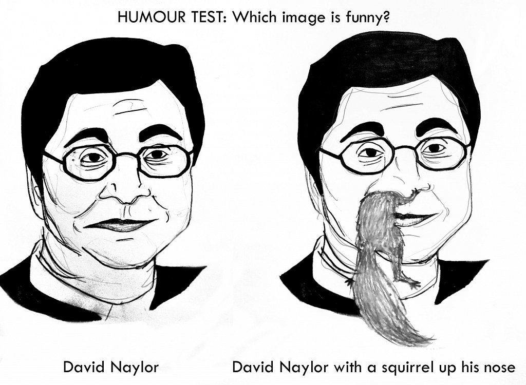 HUMOUR TEST